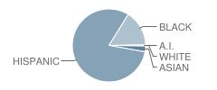 Intermediate School-I.s. 206-Ann Mersereau Student Race Distribution