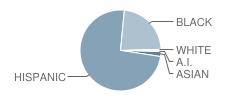 P.S. 195 School Student Race Distribution