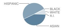 Intermediate School-I.s. 230 Student Race Distribution