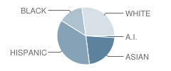 P.S. 255 School Student Race Distribution