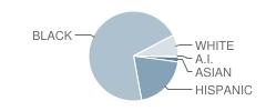 P.S. 36 School Student Race Distribution