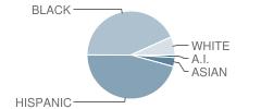 P.S. 176 School Student Race Distribution