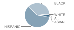 Jm Rapport School for Career Development Student Race Distribution