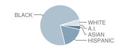 William E. Grady Vocational High School Student Race Distribution