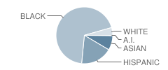School of Science and Technology Student Race Distribution