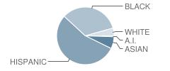 Academy of Innovative Technology Student Race Distribution