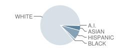 Connetquot High School Student Race Distribution
