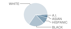 Watervliet Elementary School Student Race Distribution