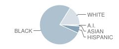 Mc^2 Stem High School Student Race Distribution