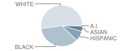 West High School Student Race Distribution