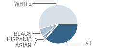 Checotah Intermediate Elementary School (Ies) Student Race Distribution