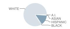 Estacada Web Academy Student Race Distribution