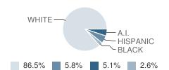 Academy of Arts and Academics Student Race Distribution