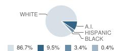 Dufur School Student Race Distribution