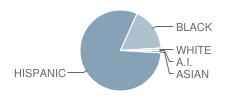 Pan American Academy Charter Student Race Distribution