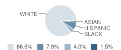 Delaware Valley Middle School Student Race Distribution