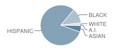 Charles Fortes Academy Student Race Distribution