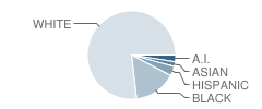 Sc Connections Academy Student Race Distribution