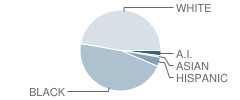 Edisto Primary School Student Race Distribution