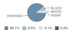 Cavazos Middle School Student Race Distribution