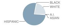 Ozona Elementary School Student Race Distribution