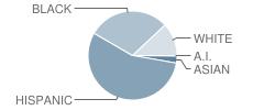 Hemmenway Elementary School Student Race Distribution