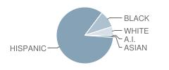 Kostoryz Elementary School Student Race Distribution