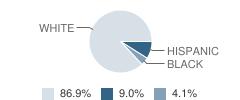 Iola Elementary School Student Race Distribution