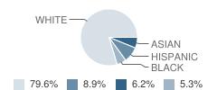 Nederland High School Student Race Distribution