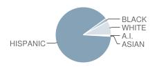 Nisd Intervention School Student Race Distribution