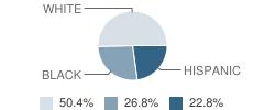Snook Secondary School Student Race Distribution