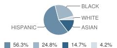 Beneke Elementary School Student Race Distribution
