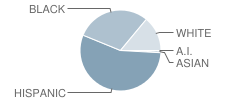A J Moore Academy Student Race Distribution