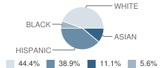 The Journey (Yic) School Student Race Distribution