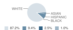 Merit College Preparatory Academy Student Race Distribution