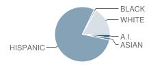 Midvale School Student Race Distribution