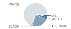 Cyprus High School Student Race Distribution