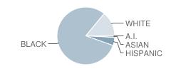 Roanoke Academy / Math & School Student Race Distribution