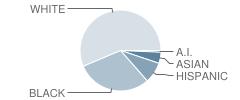 Magruder Elementary School Student Race Distribution