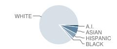 Anacortes High School Student Race Distribution