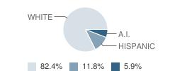 Contractual Schools Student Race Distribution