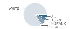 Sequim High School Student Race Distribution