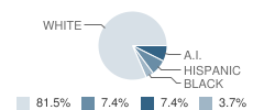 High School Re-Entry Student Race Distribution