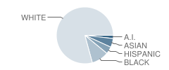Tacoma School of the Arts Student Race Distribution