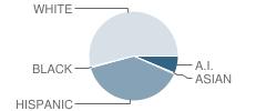 Zillah Intermediate School Student Race Distribution
