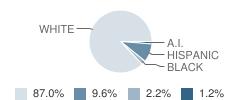 Algoma Elementary / Middle School Student Race Distribution