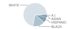 Elvehjem Elementary School Student Race Distribution