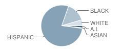 Kagel Elementary School Student Race Distribution