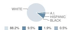 Sevastopol High School Student Race Distribution